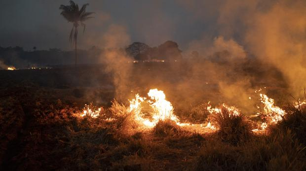 A fire burns a field on a farm in the state of Mato Grosso (Leo Correa/AP)
