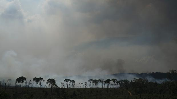 Fires across the Brazilian Amazon have sparked an international outcry for preservation of the world's largest rainforest. (Leo Correa/AP)
