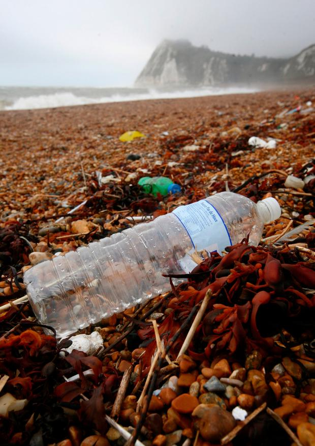 Threat: This plastic bottle is typical of the debris found on beach all around the world Photo: PA