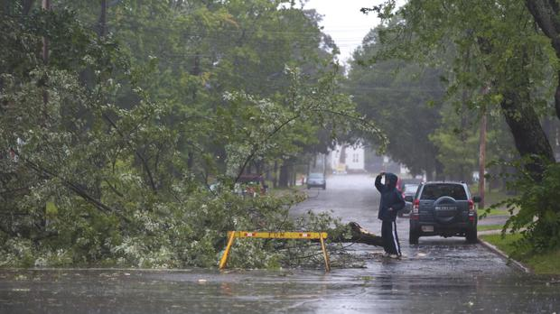 A man looks a tree that fell in Moncton, New Brunswick, as a result of Hurricane Dorian pounding the Atlantic Provinces with heavy rain and winds (Marc Grandmaison/The Canadian Press/AP)