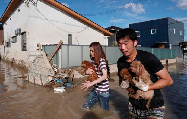 Residents save dogs from the rising waters. Photo: Bestpix