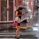 Chaos: A woman holds her umbrella in high winds in Tokyo, as the area suffered damage and disruption due to Typhoon Faxai. Photo: Getty Images