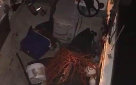 The shark lies on the bottom of the fisherman's boat Photo: ABC News/Twitter