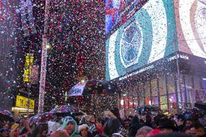 Revellers welcome 2019 in Times Square (Craig Ruttle/AP)