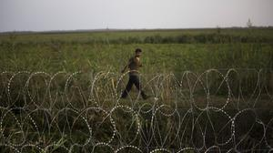 A migrant looks at the barbed wire fence from the Serbian side of the border to the Hungarian town of Roszke (AP)