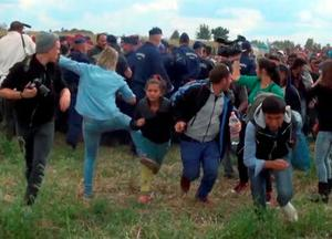 In this image taken from TV a Hungarian camerawoman, center left in blue, kicks out at a young migrant who had just crossed the border from Serbia near Roszke Hungary