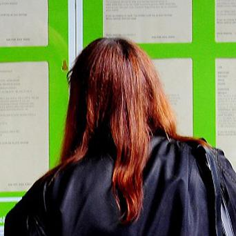 The number of job vacancies advertised on recruitment website Reed in February grew by 12 per cent