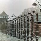 Barbaric: Auschwitz concentration camp