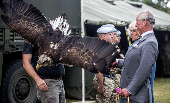 Prince Charles has a close encounter with a bald eagle in Sandringham. Getty