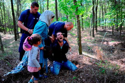 Hungarian police arrest a Syrian migrant family after they entered Hungary at the border with Serbia, near Roszke