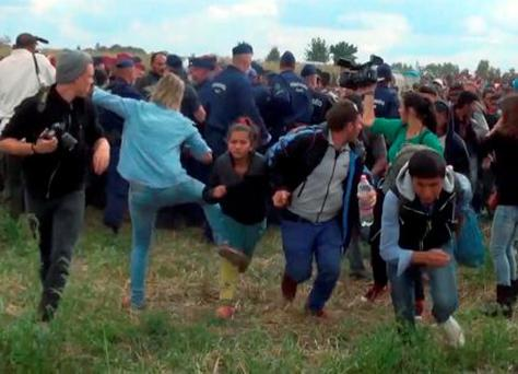 Petra Laszlo appeared to intentionally kick two young refugees before tripping Osama Abdul Mohsen, a Syrian refugee who was holding his young son at the time