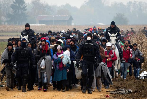 Escorted by police, migrants move through fields after crossing from Croatia, in Rigonce, Slovenia yesterday.