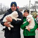 Rescuers hold three puppies that were found alive in the rubble of the avalanche-hit Hotel Rigopiano. Photo: AP
