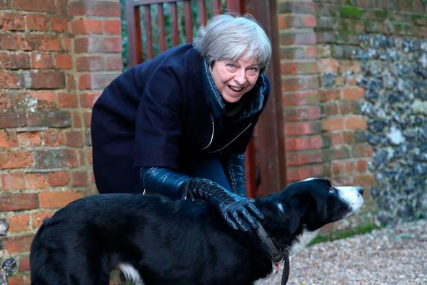 Theresa May pets a dog after attending church near her Maidenhead constituency. Photo: PA