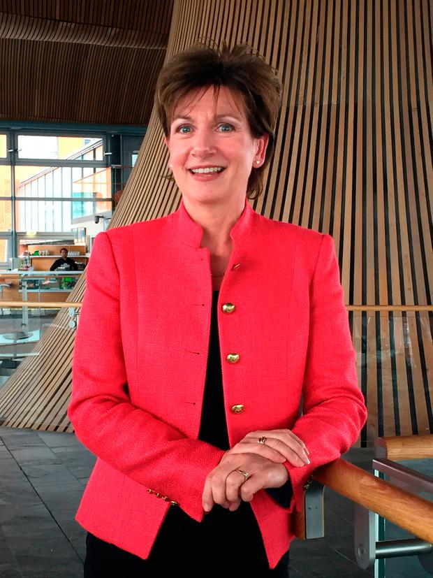 Ukip leader Diane James at the Welsh Assembly in Cardiff, as she has now quit after just 18 days in charge. Photo: PA