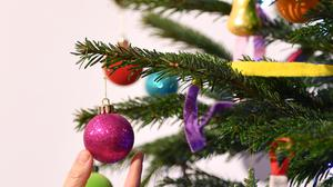 'Choosing your Christmas tree has become an ethical dilemma' (stock photo)