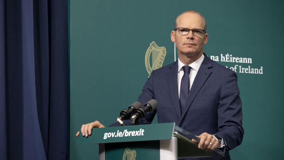 """Department officials admitted there is """"deep concern"""" for those still within Afghanistan, particularly in light of the imminent US withdrawal. Pictured, Foreign Affairs Minister Simon Coveney"""