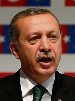 Turkish Prime Minister Tayyip Erdogan gestures during the Istanbul Conference of the Ministry For EU Affairs in Istanbul June 7, 2013. Turkey must investigate whether police used excessive force in a crackdown on days of anti-government demonstrations and hold those responsible to account, European Union enlargement commissioner Stefan Fuele said on Friday. REUTERS/Osman Orsal (TURKEY - Tags: CIVIL UNREST POLITICS)