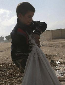 A boy whose father was killed in shelling collects firewood for cooking in a Damascus suburb.