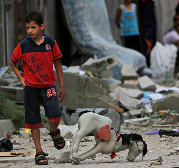 CHILDHOOD AMID THE RUBBLE: A Palestinian child wanders past debris from a destroyed house, following an overnight Israeli strike in Beit Lahiya, in the north of the Gaza Strip. Photo credit: AP Photo/Lefteris Pitarakis